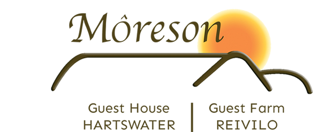 Môreson Guest House, Hartswater